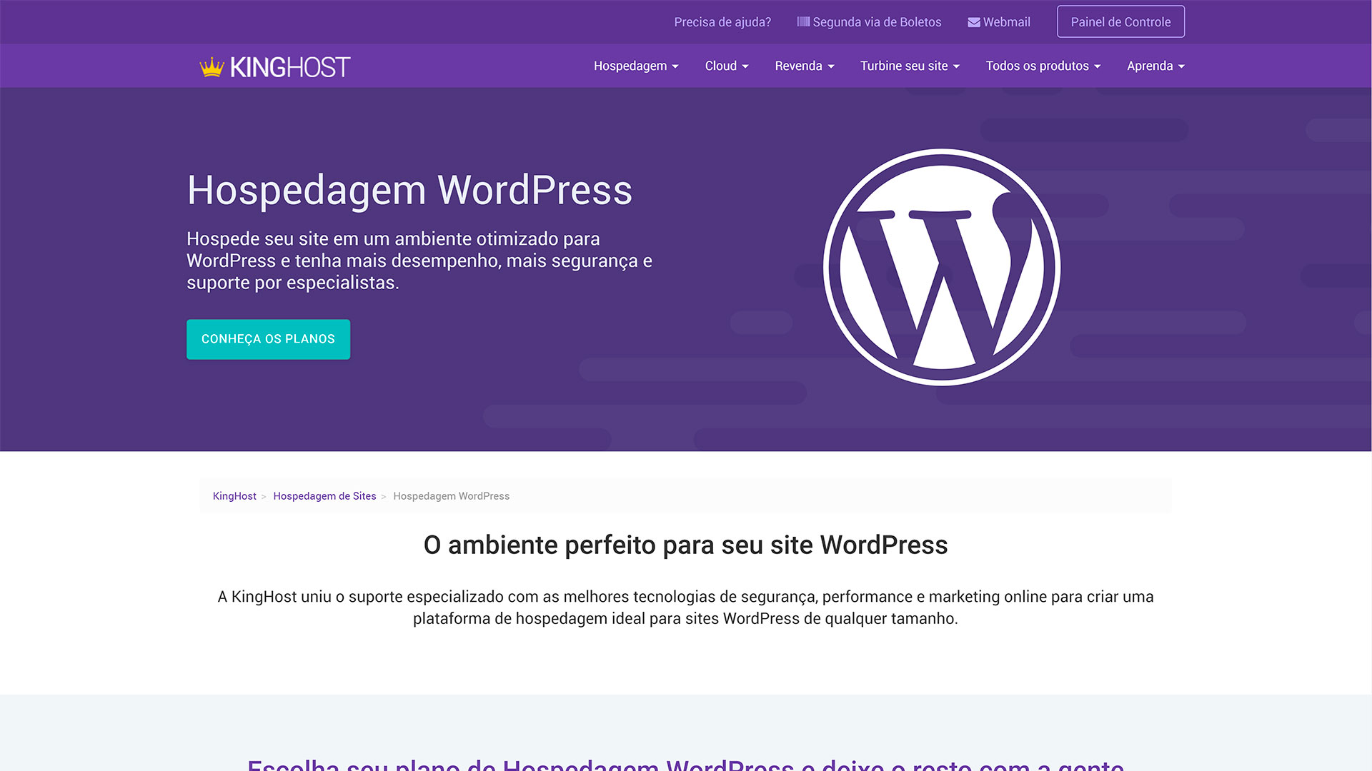 kinghost review hospedagem wordpress